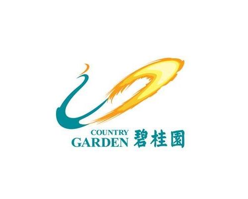 碧桂园地产项目
